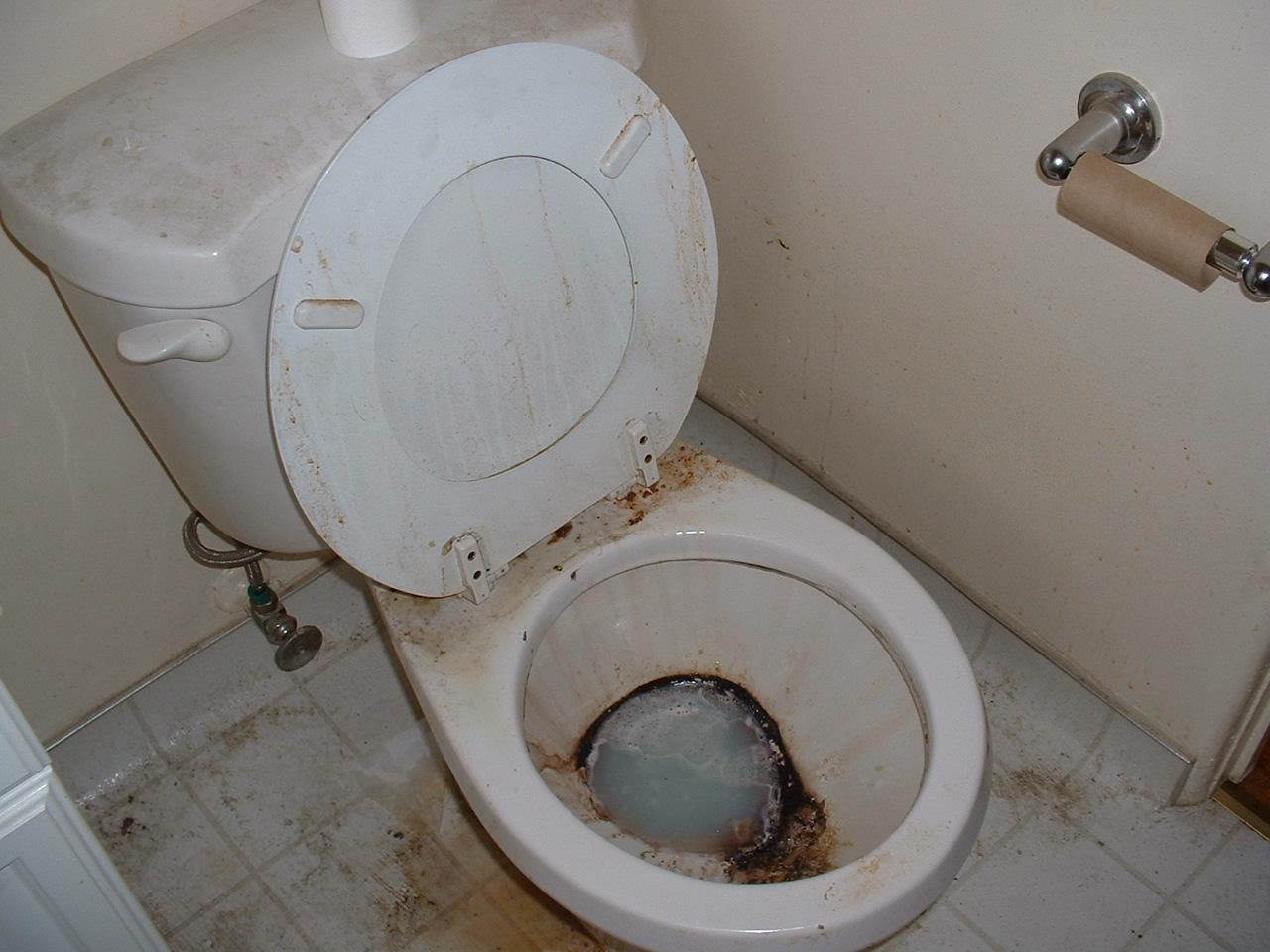 Фотки в туалете 3 фотография