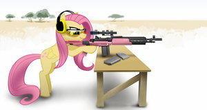 So+many+guns+that+is+one+thing+i+envy+ab